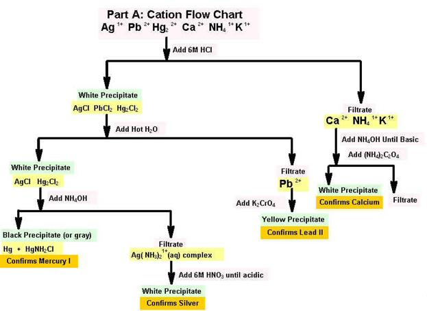 anions cations lab report Identify cations  all waste generated by this lab is toxic and must be disposed of in the hazardous  lab report: qualitative analysis of anions using spot tests.
