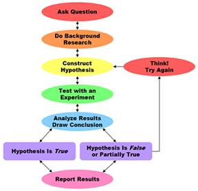 lab 19a flowchart and hypothesis Use it to help organize a lab or design a  state the hypothesis  collect data conc usions  title: scientific method flowchart author: brooke nacua created date.