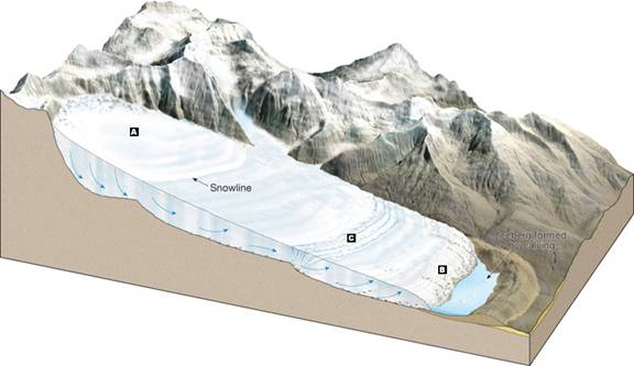 Alpine Glacier Labeled...