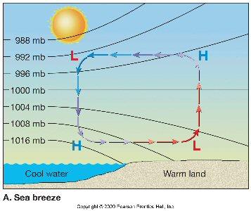 Worksheets Sea Breeze Diagram esc 1001 chapter 18 vocabulary land breeze diagram sea diagram